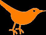 bird-297691_640